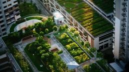 Smart & Green Cities